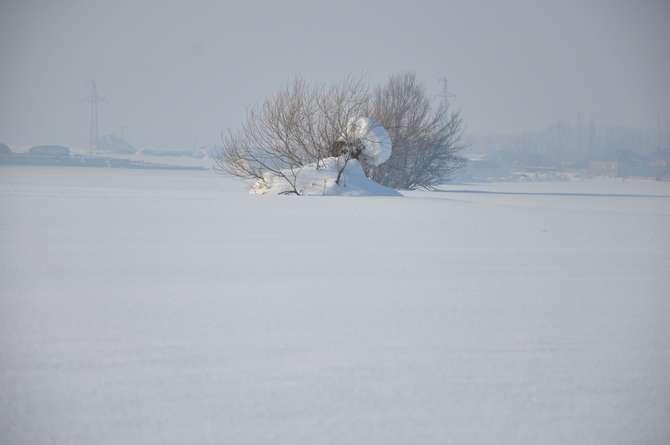 Yüksekova'da kar manzaraları galerisi resim 13