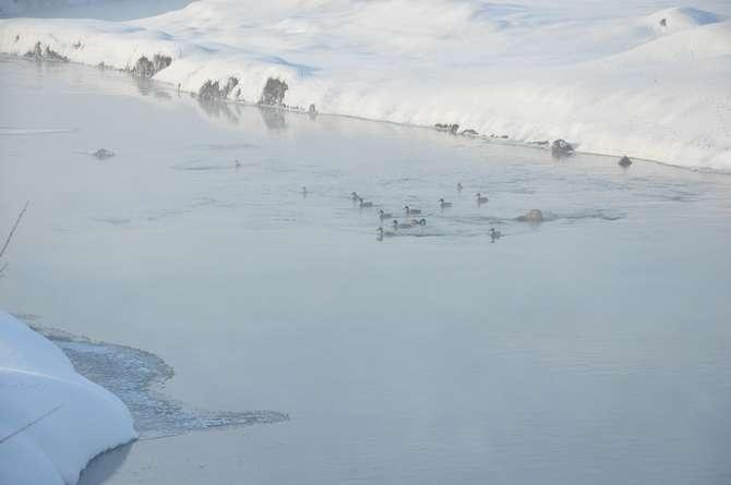 Yüksekova'da kar manzaraları galerisi resim 16