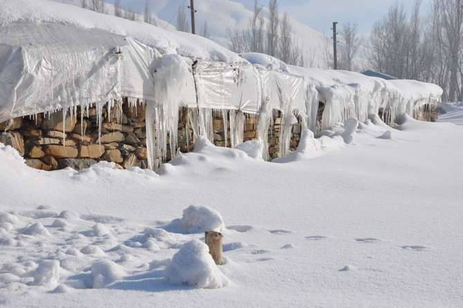 Yüksekova'da kar manzaraları galerisi resim 5