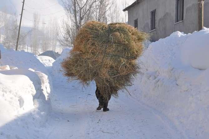 Yüksekova'da kar manzaraları galerisi resim 7