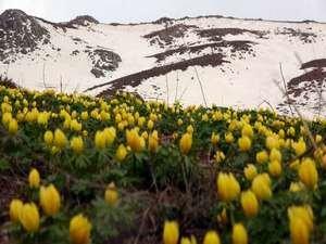 Yüksekova'da iki mevsim 2021