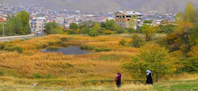 Hakkari'de sonbahar güzelliği galerisi resim 1
