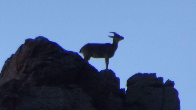 Sümbül dağı zirvesinde görsel şov galerisi resim 1