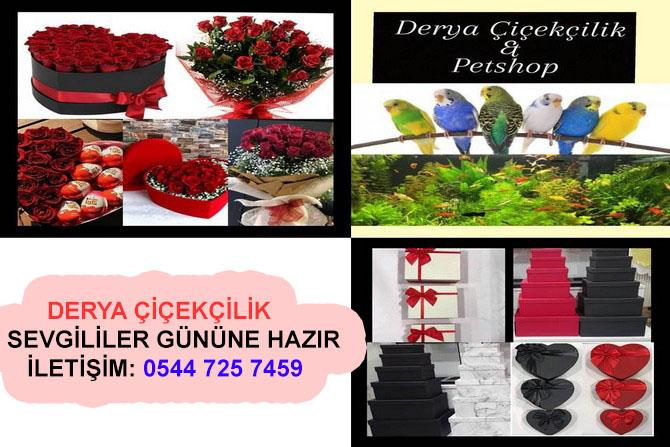Derya Çiçekçilik sevgililer gününe hazır