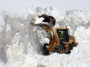 Van'da nisan ayında karla mücadele