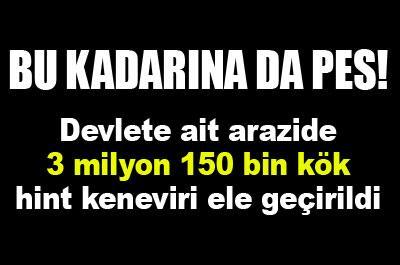 PES DOĞRUSU DEVLET BUNU YAPARSA...