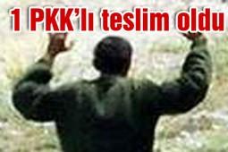 1 PKK`LI JANDARMAYA TESLİM OLDU....