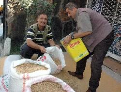 Fitrelik buğday satışları başladı