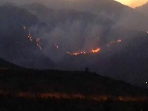 Çukurca'da ormanlık alanda yangın çıktı