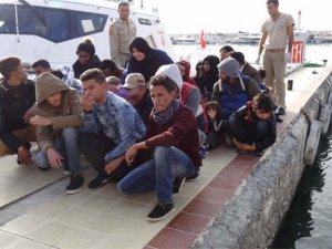 113 göçmen yakalandı!