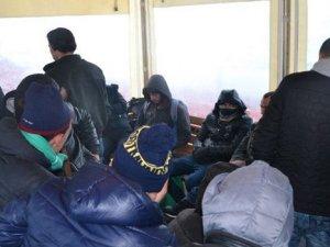 137 kaçak göçmen yakalandı!