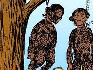 İdam edilen maymunların hikayesi!