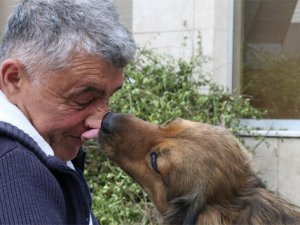 Köpekten insanlık dersi