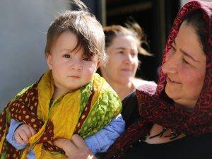 HDP'nin seçim çalışması devam ediyor