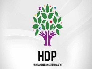 HDP Varto ilçe başkanı tutuklandı