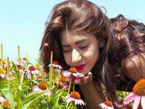 Üniversite yerleşkesinde 120 tür bitki yetiştiriliyor