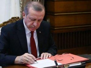Erdoğan'dan e yüksek atama!