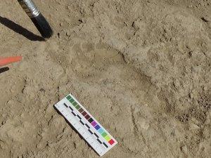2700 yıllık Urartulu kadının ayak izine rastlandı