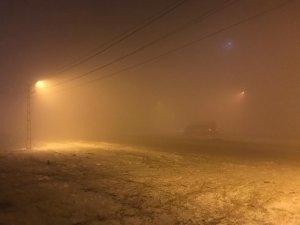 Yüksekova'da dondurucu soğuklar etkili oldu