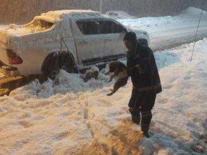 Donmak üzere olan yavru köpek kurtarıldı