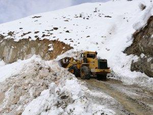 15 yerleşim yerinde karla mücadele sürüyor