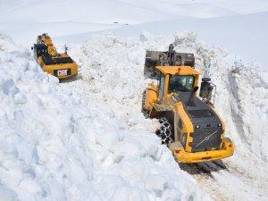5 metrelik karla mücadele