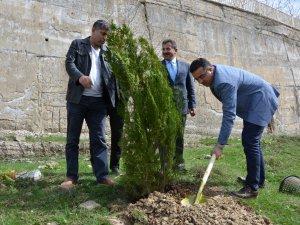 Hakkari 'Adalet Ormanı'na ilk fidanlar dikildi