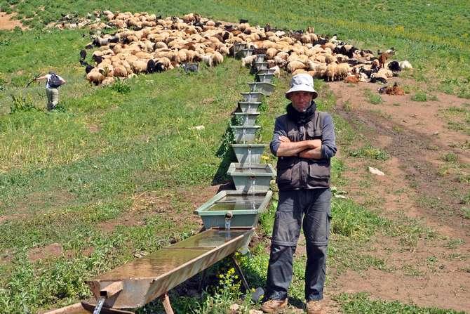 İran'dan gelip ayda 3 bin 400 TL'ye çoban oldu