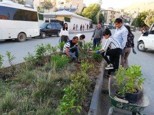 Belediye encümenleri orta refüjlere çiçek ekti