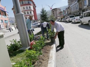 Hakkari'de yeşillendirme çalışmaları sürüyor