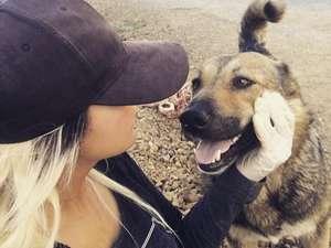 Fedakar öğretmen köpekleri için tatilden vazgeçti