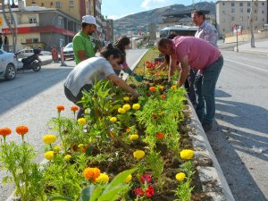 Belediye meclis üyeleri caddeleri renklendirdi