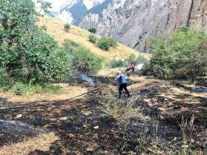 Ördekli ve Doğanca'daki yangın söndürüldü