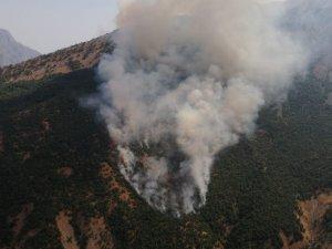 Akkaya köyünde orman yangını