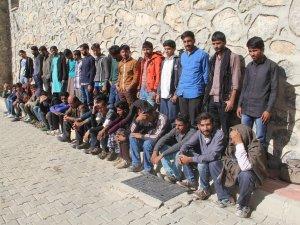 Başkale'de 39 düzensiz göçmen yakalandı