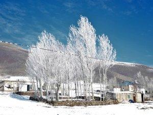 Sibirya soğukları etkili olmaya devam ediyor...