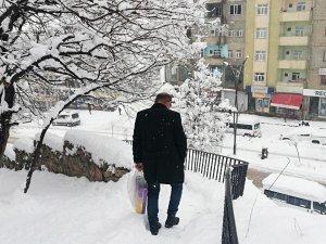 Kar yağışı Şemdinli'de de etkili olmaya başladı