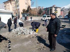 Kar Hakkari altyapısına büyük zarar verdi