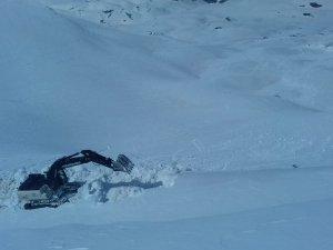 Fidan tepede karla mücadele çalışması