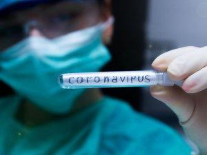 Duhok'ta tüm koronavirüs hastaları iyileşti
