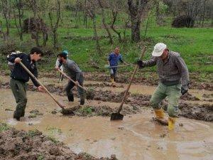 Çukurca'da imece usulü çeltik ekimi