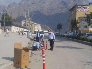 Belediye duba çalışması başlattı