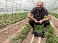 Belediye seraları ürün vermeye başladı