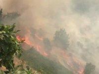 Çukurca Narlı köyünde korkutan yangın