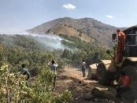 Şemdinli'deki  orman yangını söndürüldü