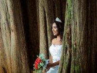 Kadın kesilmesi planlanan ağaçlarla 'evlendi'