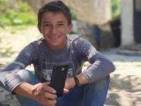 Ceviz ağacından düşen çocuk öldü