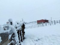 Gümüşhan'da yılın ilk karı yağdı
