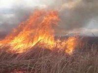 Yüksekova Nehil Sazlığı'nda yangın