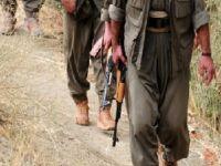 PKK Harona'da kimlik kontrolü yaptı